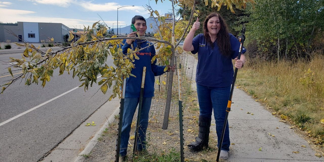 Work Experience Students Touch Up Trees on Mainstreet